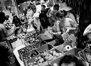 Santa Monica Farmers Market 1981