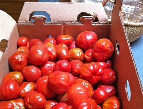 Tomato Math