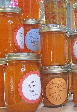 My Grandmother's Apricot Preserves