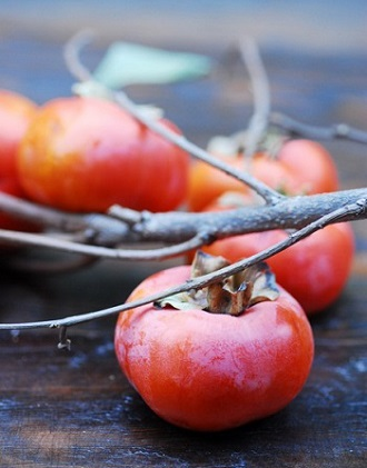 Fuyu Persimmons on Branch