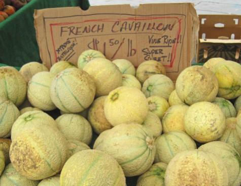 cantaloupe-melon-weiser-family-farms