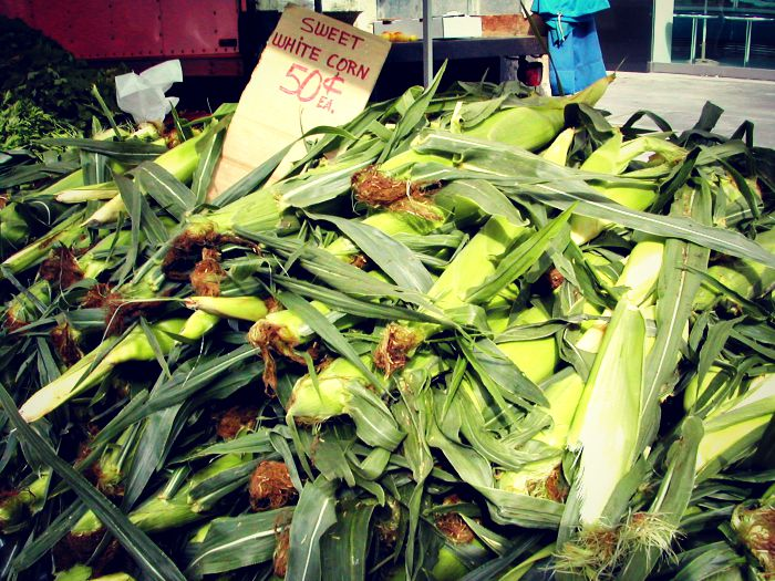 farmers-market-summer-corn