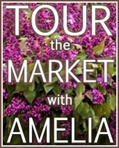 santa-monica-farmers-market-tour-with-amelia