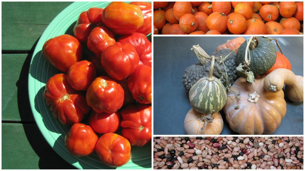 september-october-produce